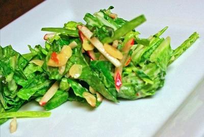 Napa Cabbage Greek Yogurt Asian Coleslaw Recipe