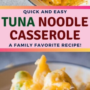 The family classic tuna noodle casserole, topped with all sorts of cheesy goodness!