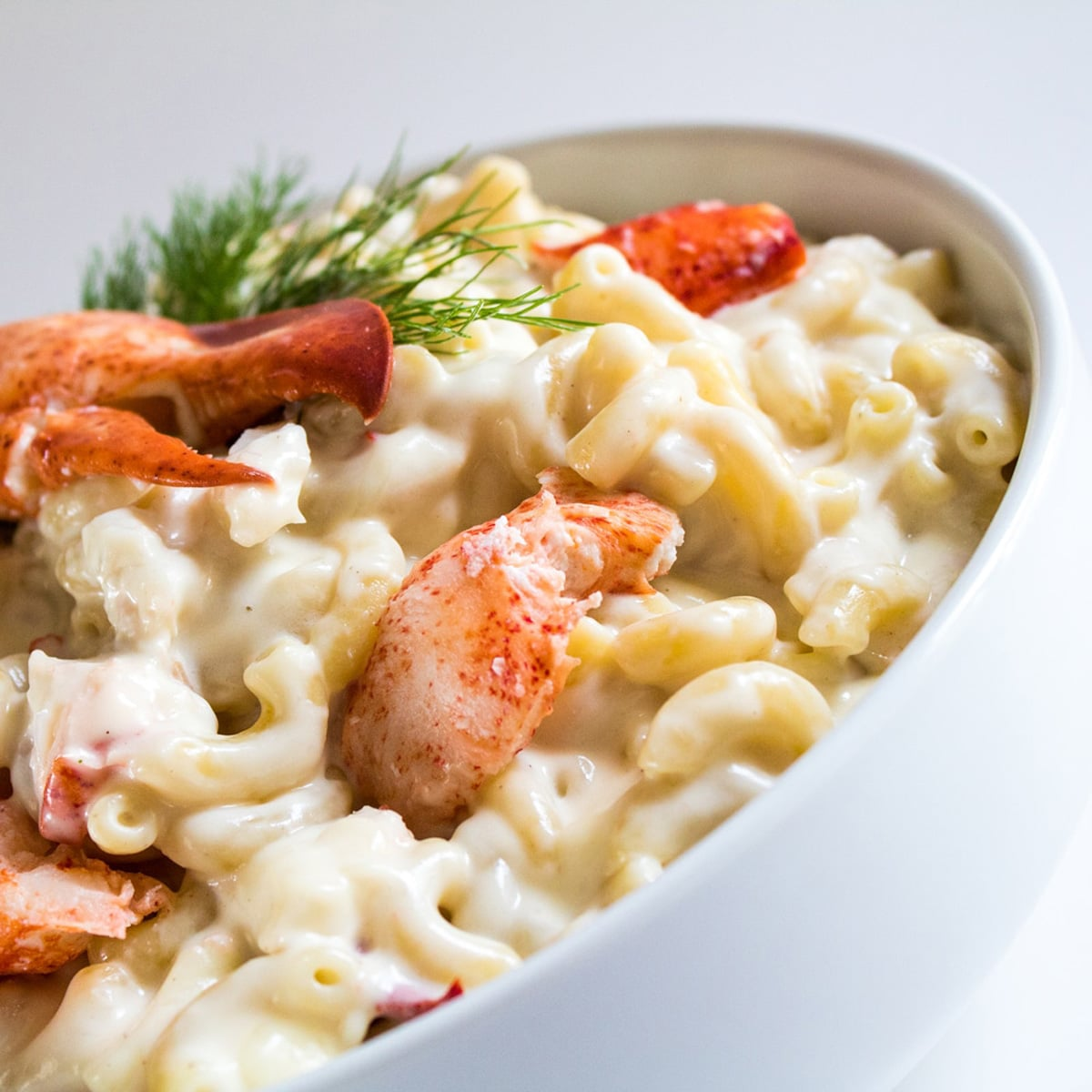 Lobster mac and cheese in a white bowl with chunks of lobster and fresh dill on top.