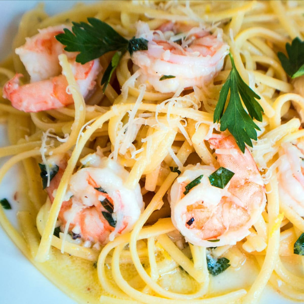 Shrimp scamp over a bed of noodles, with parsley.