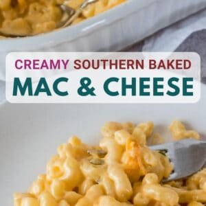 vertical image of southern baked macaroni and cheese served on a white plate with a fork dishing up a bite and white baking dish with the mac and cheese in the background