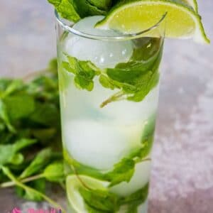 The perfect Vodka Mojito is easy to make and a wonderful citrus cocktail to enjoy for Cinco de Mayo or any day!