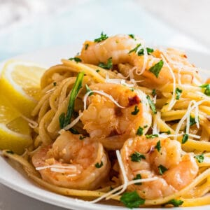 large square angled view of the garlic shrimp pasta served on white dish.