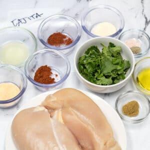 grande quadrato Fajita Chicken Marinade ingredienti pronti da unire.