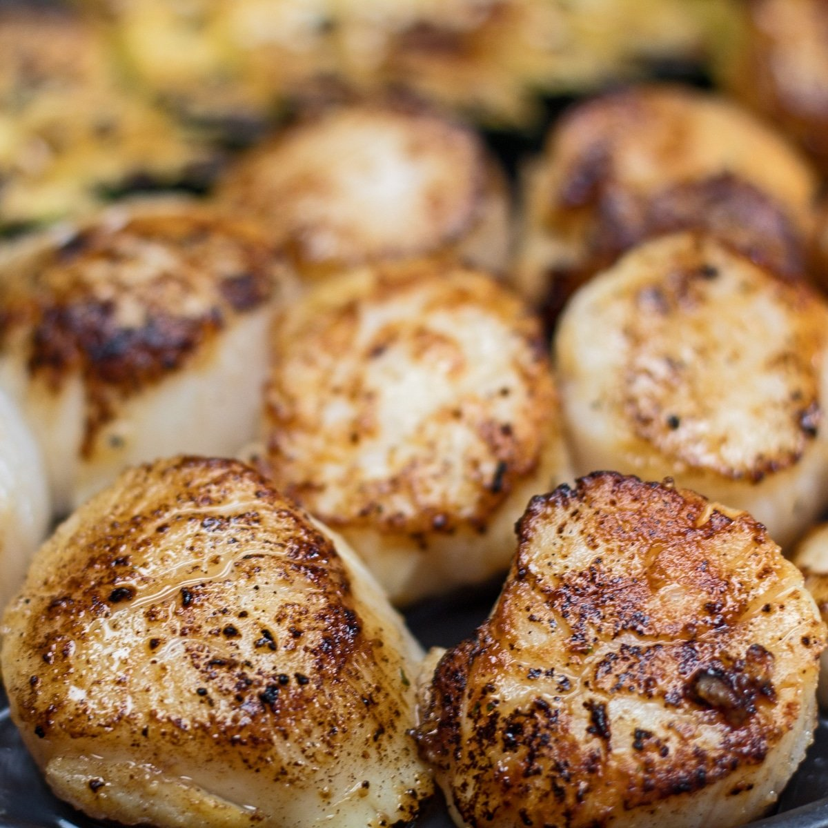 large square easy hibachi scallops served with zucchini.