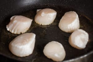 Seasoned sea scallops placed into hot skillet for searing.