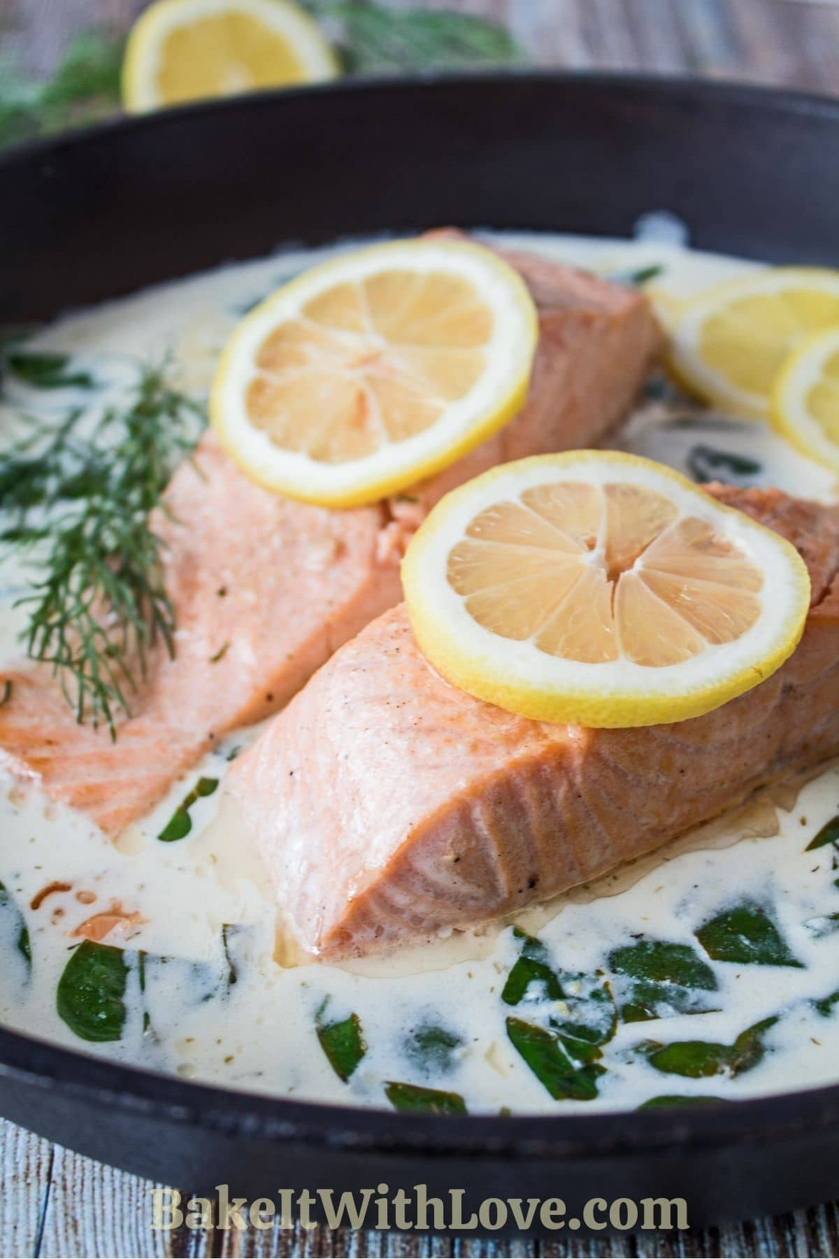 Perfectly pan-fried salmon in creamy white wine sauce with lemon slices and fresh dill weed.