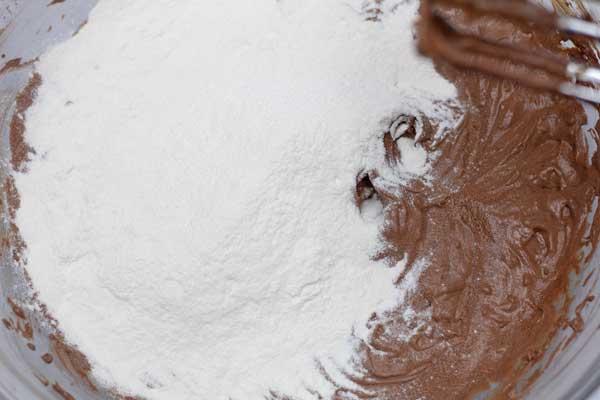 Lavorare la foto 8 aggiungendo la farina all'impasto.