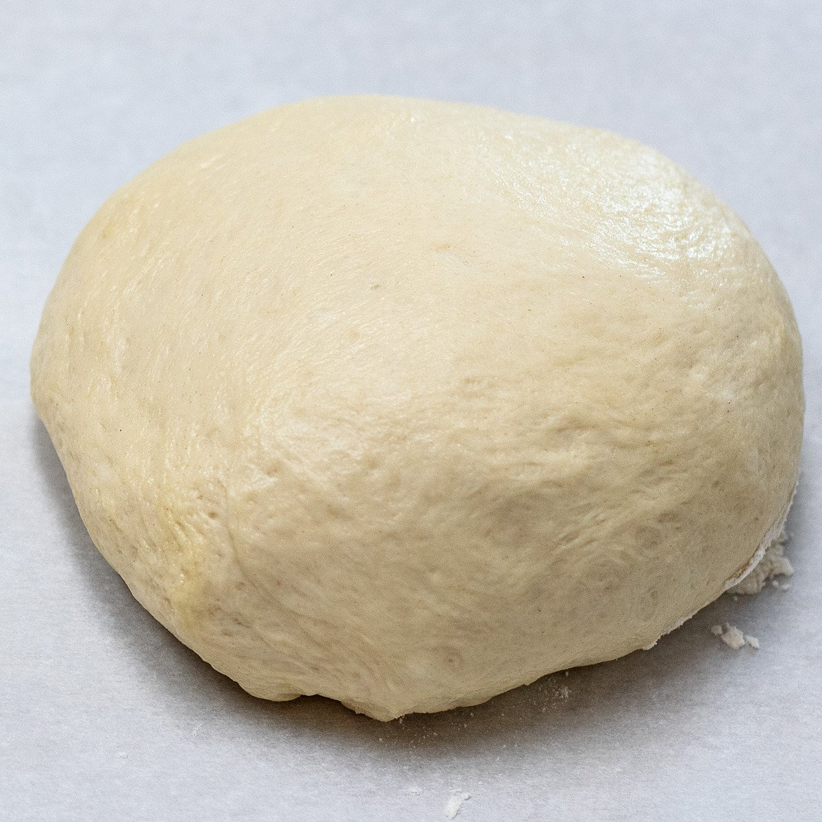 Shaped pizza dough round ready to rise on parchment paper.